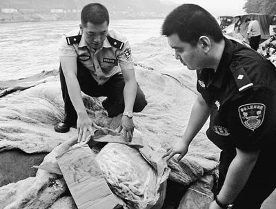 扎根边关的木棉树——追记因公牺牲的河口海关缉私警察李顺麒